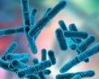 Постбиотици и парабиотици – следващото поколение грижа за здравето