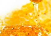 Здраве с вкус на мед – 6 ползи за здравето от меда
