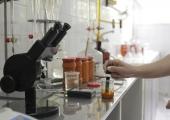 Естрогенът в храните – има ли поводи за паника? (Втора част)