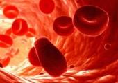 Диетата според кръвната група – За и против (Видео)