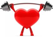 Сърцето и тестостерона