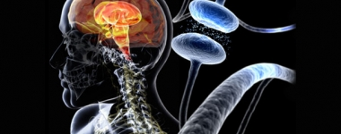 Дериват на холестерола може да ни спаси от Болестта на Паркинсон