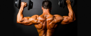 Синергични комбинации за натрупване на чиста мускулна маса