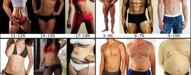 Процент на телесните мазнини – Кой е нормален и най-здравословен?