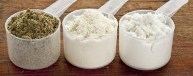 Кой е истинският шампион на протеиновите пудри - сравнение показател по показател между казеина, суроватката, яйчния албумин и соевия протеин (Първа част)