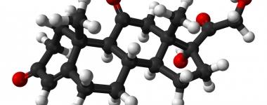Кортизонът – стресовият хормон, който руши мускулната тъкан