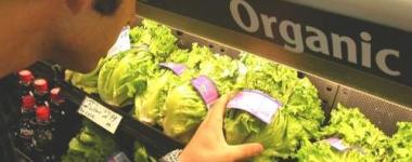 Храните, които няма смисъл да купуваме органични