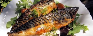 Празнично: Още веднъж – Защо риба и как да я готвим най-здравословно?