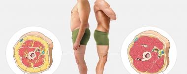5 неща за мастната тъкан, които (може би) не знаете