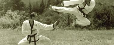 Тан Су До – Бойният стил на Чък Норис (Видео)