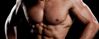 Как катехоламините намаляват катаболното разграждане на мускулната тъкан