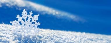 Домашна зимна кръгова тренировка (Видео)
