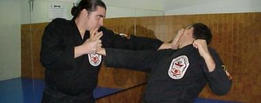 """Лима Лама - """"Ръцете на мъдростта"""", които боравят с много бойни стилове наведнъж"""