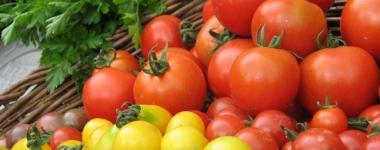 По-малки, но по-полезни – Органичните домати съдържат 57% повече витамин С и 2 пъти повече антиоксиданти