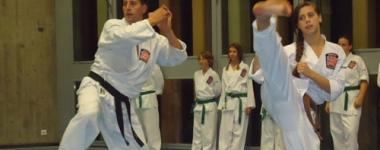 Кеичу-До –уличната система за самозащита, която използва комбинации от най-малко три последователни удари