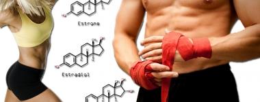 Различните лица на естрогена