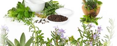 Приемането на билки заедно с лекарствата може да направи медикаментите по-опасни