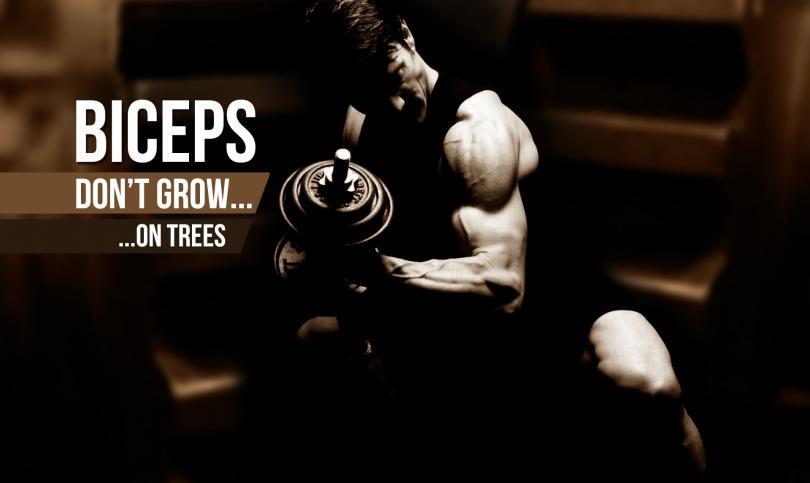 7 причини бицепсите ви да не растат