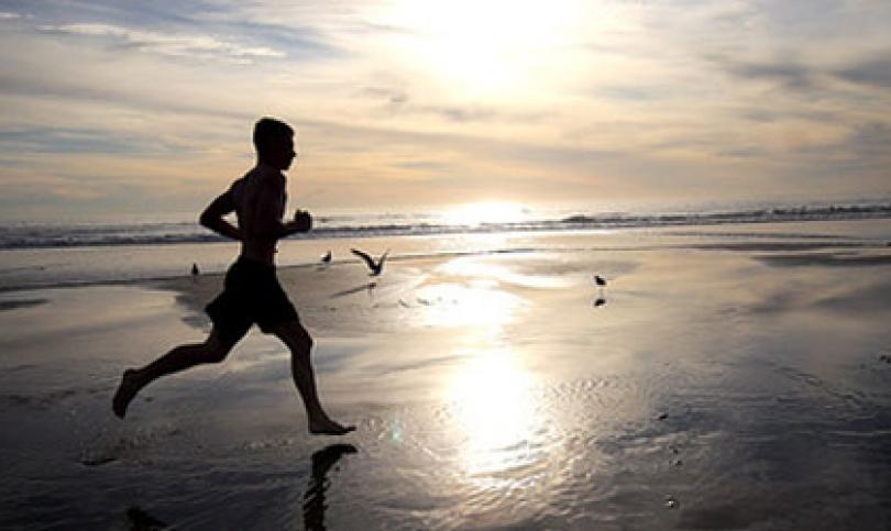Учени откриха хормон, който мотивира за дълги и интензивни тренировки даже най-мързеливите