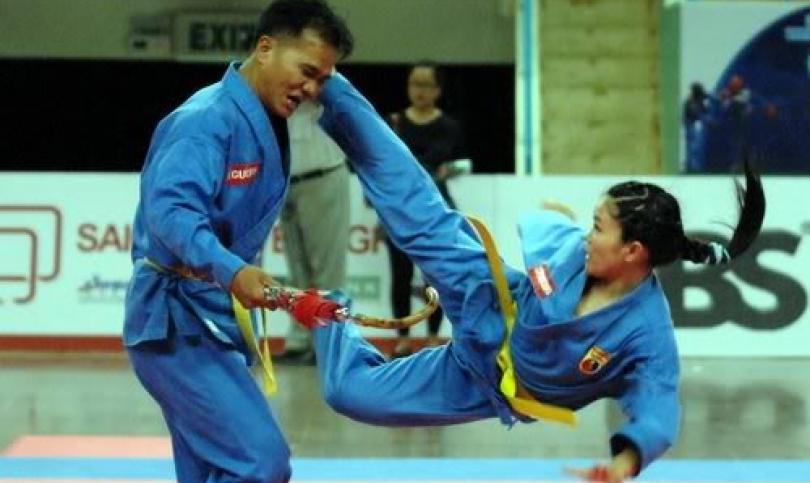 Вовинам – виетнамското бойно изкуство, в чиято основа са залегнали принципите на вселенския баланс между Ин и Ян
