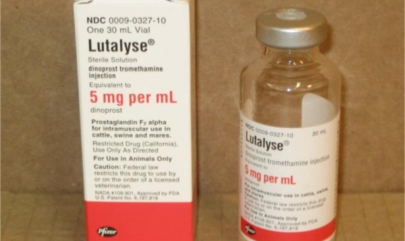 Lutalyse -  анаболният нестероиден агент, който повишава протеиновия синтез в мускулите