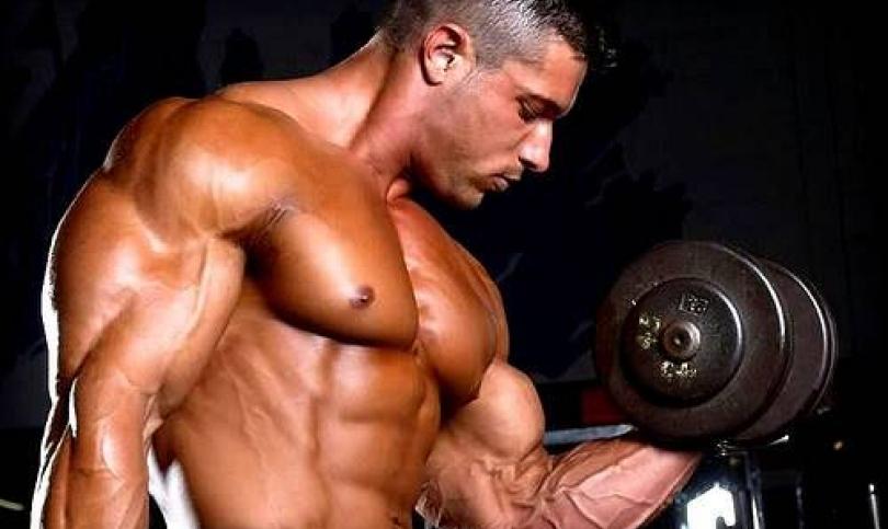 Креатинът – Номер едно за сила и мускулна маса (Част втора)