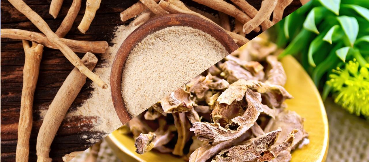 Ашваганда или Златен корен?